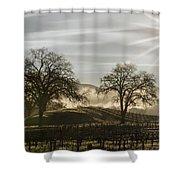 Wine Country Sunrise Shower Curtain