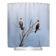 No Longer Solitary Shower Curtain