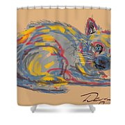 No Name Cat Shower Curtain