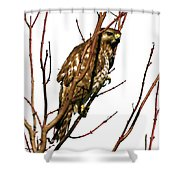 No Place To Hide Shower Curtain