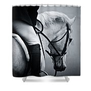 Nobility Shower Curtain