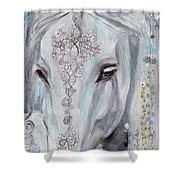 Noble One Shower Curtain