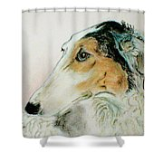 Noble Scrutiny Shower Curtain