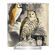 Nocturnal Scene With Three Owls Shower Curtain