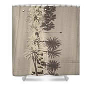Noon Palms Shower Curtain