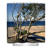 Nordic Beach Shower Curtain