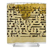 North Africa Or Near East Shower Curtain