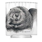North American Beaver Shower Curtain