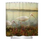 North Carolina Ibis Shower Curtain