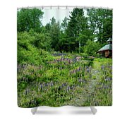 North Country Nod To Monet Shower Curtain