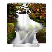 North Fork Of Wallace Shower Curtain