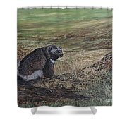 North Of The Utukok River Shower Curtain