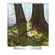 North Woods Lake One Shower Curtain