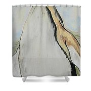 Northern Bliss Shower Curtain
