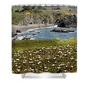 Northern California Coast Scene Shower Curtain