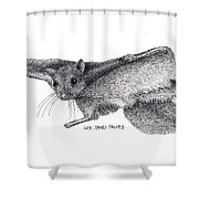 Northern Flying Squirrel Shower Curtain