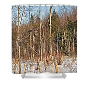 Northern Forests Ghost In-flight Shower Curtain