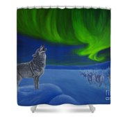 Northern Lights Night Shower Curtain