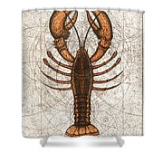 Northern Lobster Shower Curtain by Charles Harden