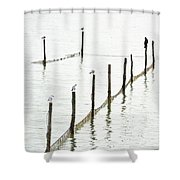 Northern Sea Landscape Shower Curtain