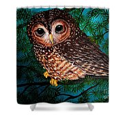 Northern Spotted Owl Shower Curtain