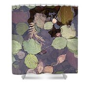 Northern Waters, Autumn Shower Curtain