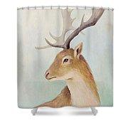 Norway Deer Shower Curtain