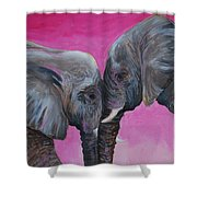 Nose To Nose In Pink Shower Curtain