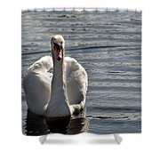 Not Another Swan Shower Curtain