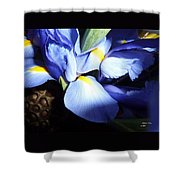 Bright Happiness Shower Curtain