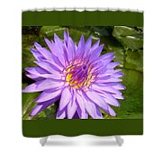 Purple Smiles Shower Curtain