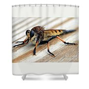 Not Just Another Pretty Face Shower Curtain