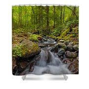 Not-so-dry Creek Shower Curtain