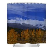 Not Yet Winter Shower Curtain