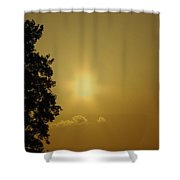 Not Your Average Mellow Yellow Shower Curtain