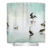 Nothing But Blue Skies Shower Curtain