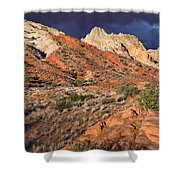 Notom Morning Shower Curtain