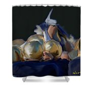 Notre Dame #1 Shower Curtain