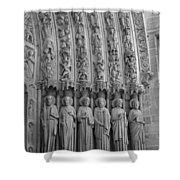 Notre Dame Doorway Detail Paris France Shower Curtain