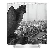 Notre Dame Gargoyle Shower Curtain