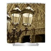 Notre Dame Street Lights Paris France Sepia Shower Curtain