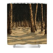 Notte Di Neve Shower Curtain