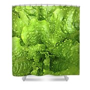 Nourish In Green Shower Curtain