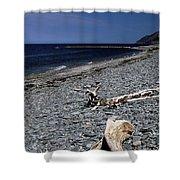 Nova Scotia Pebble Beach Shower Curtain