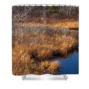 November Brook And Wetland Barren  Shower Curtain