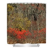 November Flame Shower Curtain