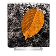 November Leaf Shower Curtain