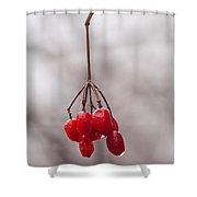 November Reds Shower Curtain