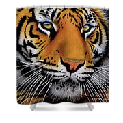 November Tiger Shower Curtain by Jurek Zamoyski
