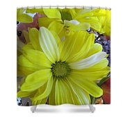 Now It Is Time For Spring Shower Curtain